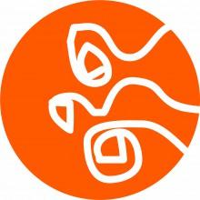 mini_300dpi_orange