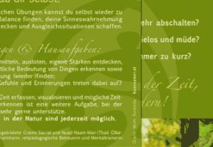 goetz_einleg_thumb